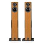 Напольную акустику Audio Physic Tempo 25 Plus (Walnut)