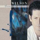 Виниловая пластинка Brian Wilson BRIAN WILSON (180 Gram vinyl record)
