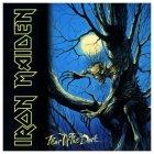 Виниловая пластинка Iron Maiden FEAR OF THE DARK (180 Gram)
