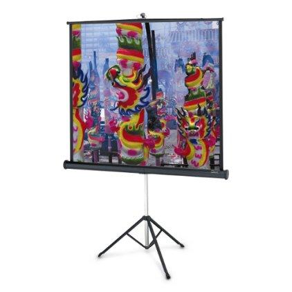 """Экран Projecta Professional 162x213 см (100"""") Matte White на штативе (10430107)"""