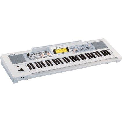 Клавишный инструмент Roland E09W