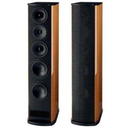 Напольная акустика T+A TCD 310 S Walnut dark matt