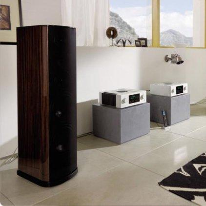 Напольная акустика T+A TCD 110 S Walnut dark matt