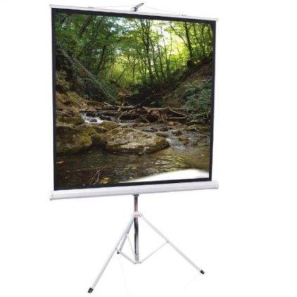 """Экран ScreenMedia SAM-1103 (1:1) 70""""х70"""" 180x180 MW (мобильный)"""