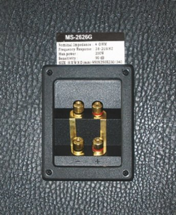 Напольная акустика Dynavox MS-2626 black