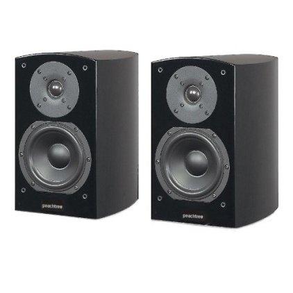 Акустическая система Peachtree Audio D5 High Gloss Black