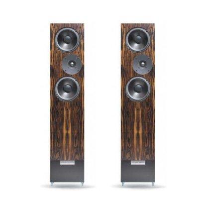 Напольная акустика LIVING VOICE AUDITORIUM R3 rosenut