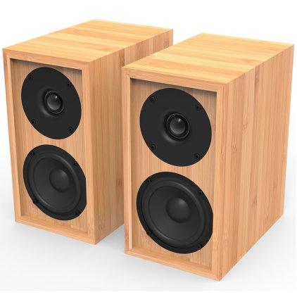 Полочная акустика iFi Audio Retro LS3.5