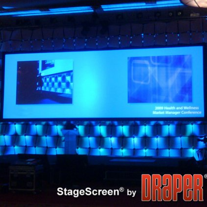 "Экран Draper Stagescreen HDTV (16:9) 1400/551"" 686*1219 BM1300 (black backed, no legs)"