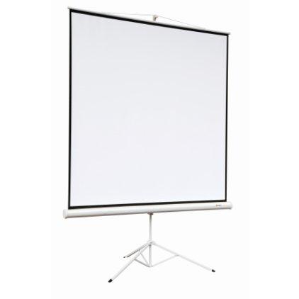 "Экран Digis DSKA-1104 (Kontur-A, формат 1:1, 118"", 220*220, MW)"