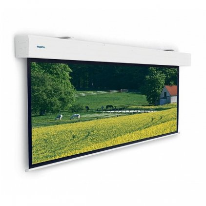 "Экран Projecta Elpro Large Electrol 223x350 см (158"") Matte White с эл/приводом (10100335)"