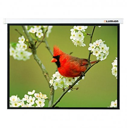 "Экран Lumien Master Portable 163x137 см (раб. область 75х133 см) (60"") Matte White FiberGlass"