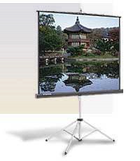 """Экран Da-Lite Picture King (1:1) 70""""х70"""" 178x178 MW (мобильный)"""
