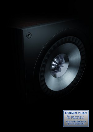 Настенная акустика KEF Q800DS Black oak