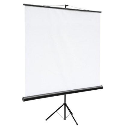 "Экран Digis DSKC-1102 (Kontur-С, формат 1:1, 100"", 180*180, MW)"