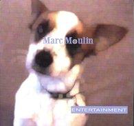 Виниловая пластинка Marc Moulin ENTERTAINMENT (180 Gram)