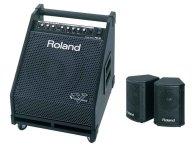 Концертную акустическую систему Roland PM30