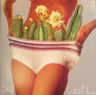 Виниловая пластинка White Denim STIFF (LP+CD)