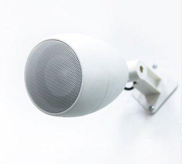Ландшафтная акустика CVGaudio Flo308W