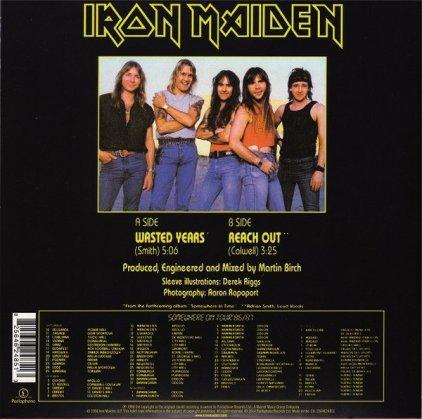 Виниловая пластинка Iron Maiden WASTED YEARS (Limited)