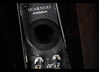 Полочная акустика Sonus Faber Guarneri evolution piano black