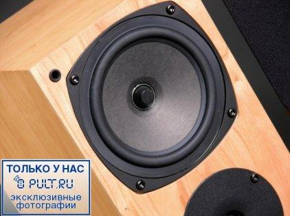 Акустическая система Rega RS1 black ash