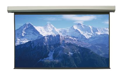 "Экран Lumien Master Large Control 422x656 см (раб. область 404x646 см) (300"") Matte White"