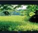 "Экран Vutec Lectric IV (9:16) 147"" BriteWhite 90 TBTL картинка 4"