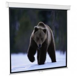 Экраны для проекторов ScreenMedia Настенный экран Economy, формат 203*203см 1:1 MW (