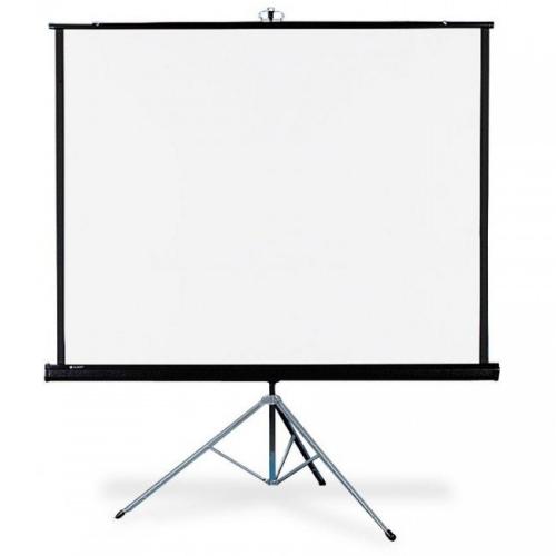 Экраны для проекторов Draper Diplomat NTSC (3:4) 244/96 152x203 MW (мобильный)