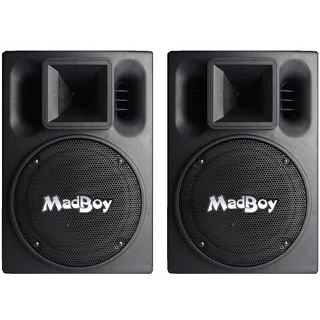 Концертные акустические системы MadBoy BONEHEAD 208