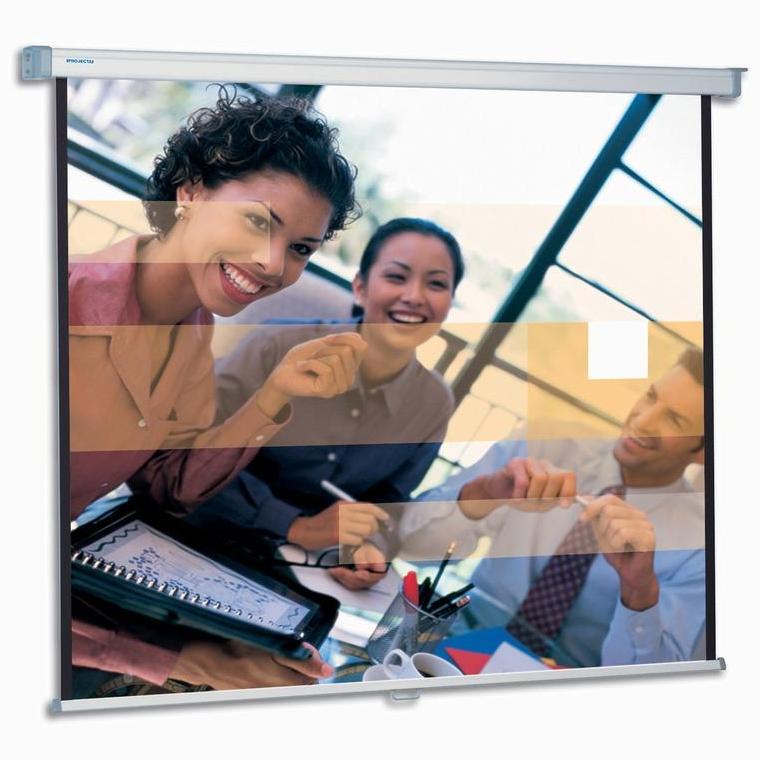 Экраны для проекторов Projecta