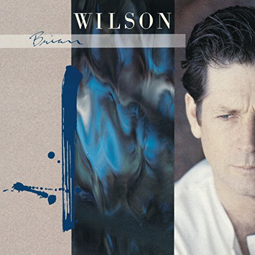 Виниловые пластинки Brian Wilson BRIAN WILSON (180 Gram vinyl record)  brian h breuel staying wealthy