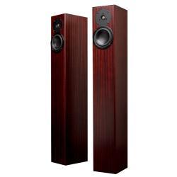 ��������� �������� Totem Acoustic Arro mahogany