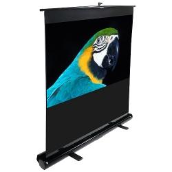 Экраны Elite ScreensЭкраны для проекторов<br>Elite Screens  - специализируется на выпуске качественных проекционных экранов и проекционных экранов для домашних кинотеатров.Компания Elite Screens производит следующие виды экранов: экраны обратной проекции, моторизированные экраны, настольные презентационные экраны, экраны из акустически прозрачных материалов, вогнутые проекционные экраны. Миссия компании Elite Screens — оперативно поставлять в разные страны мира продукцию, созданную на базе самых новейших...<br>